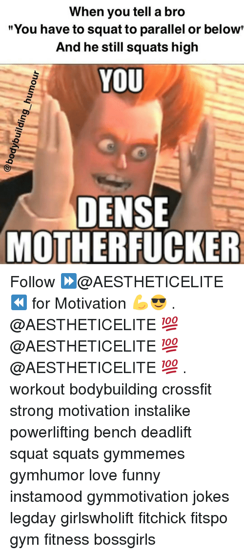 """Dense Motherfucker: When you tell a bro  """"You have to squat to parallel or below  And he still squats high  YOU  DENSE  MOTHERFUCKER Follow ⏩@AESTHETICELITE ⏪ for Motivation 💪😎 . @AESTHETICELITE 💯 @AESTHETICELITE 💯 @AESTHETICELITE 💯 . workout bodybuilding crossfit strong motivation instalike powerlifting bench deadlift squat squats gymmemes gymhumor love funny instamood gymmotivation jokes legday girlswholift fitchick fitspo gym fitness bossgirls"""