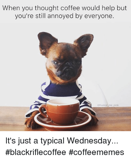 Coffee, Help, and Pink: When you thought coffee would help but  you're still annoyed by everyone.  @humor me pink It's just a typical Wednesday... #blackriflecoffee #coffeememes