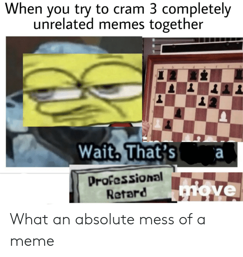 Meme, Memes, and You: When you try to cram 3 completely  unrelated memes together  Wait. That's a  Professional  Retard  ve What an absolute mess of a meme