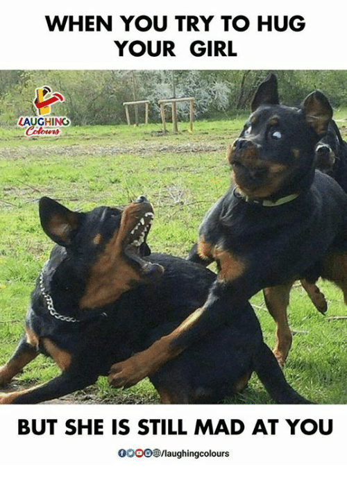 Girl, Your Girl, and Mad: WHEN YOU TRY TO HUG  YOUR GIRL  LAUGHING  BUT SHE IS STILL MAD AT YOU  /laughingcolours
