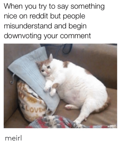 Love, Reddit, and MeIRL: When you try to say something  nice on reddit but people  misunderstand and begin  downvoting your comment  LOVE meirl
