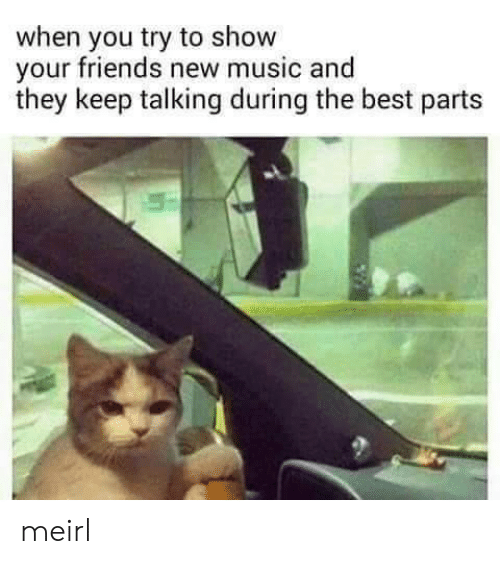 Keep Talking: when you try to show  your friends new music and  they keep talking during the best parts meirl
