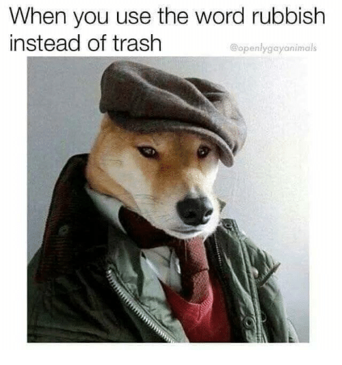 Memes, Trash, and Word: When you use the word rubbish  instead of trash  @openlygayanimals