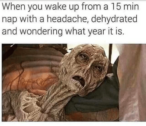 Wake, You, and Nap: When you wake up from a 15 min  nap with a headache, dehydrated  and wondering what year it is.