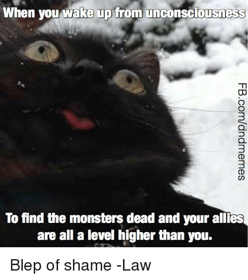 deads: When you wake up from unconsciousness  3  To find the monsters dead and your allies  are all a level higher than you. Blep of shame  -Law