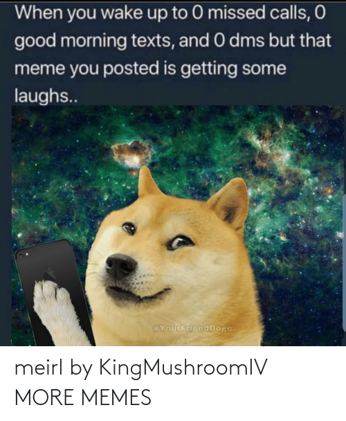 Texts: When you wake up to 0 missed calls, O  good morning texts, and 0 dms but that  meme you posted is getting some  laughs..  @YourFriend Doge meirl by KingMushroomIV MORE MEMES