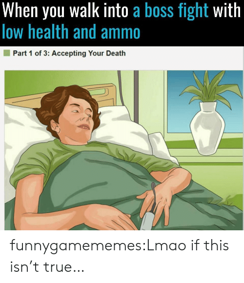 Lmao, True, and Tumblr: When you walk into a boss fight with  low health and ammo  Part 1 of 3: Accepting Your Death funnygamememes:Lmao if this isn't true…