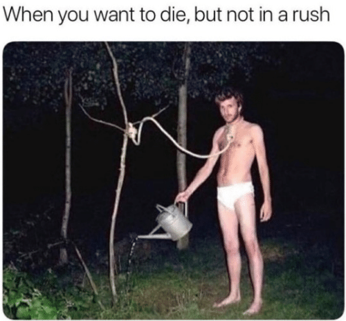 Rush, You, and When You: When you want to die, but not in a rush