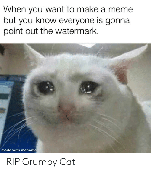 Meme, Reddit, and Grumpy Cat: When you want to make a meme  but you know everyone is gonna  point out the watermark  made with mematic RIP Grumpy Cat