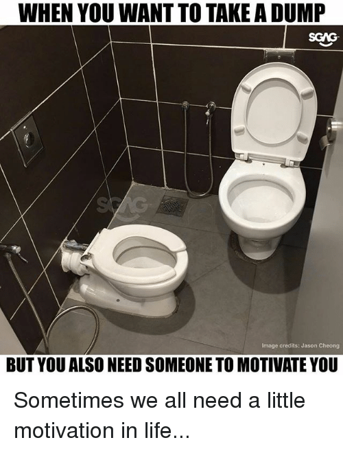 Life, Memes, and Image: WHEN YOU WANT TO TAKE A DUMP  Image credits: Jason Cheong  BUT YOU ALSO NEED SOMEONE TO MOTIVATE YOU Sometimes we all need a little motivation in life...