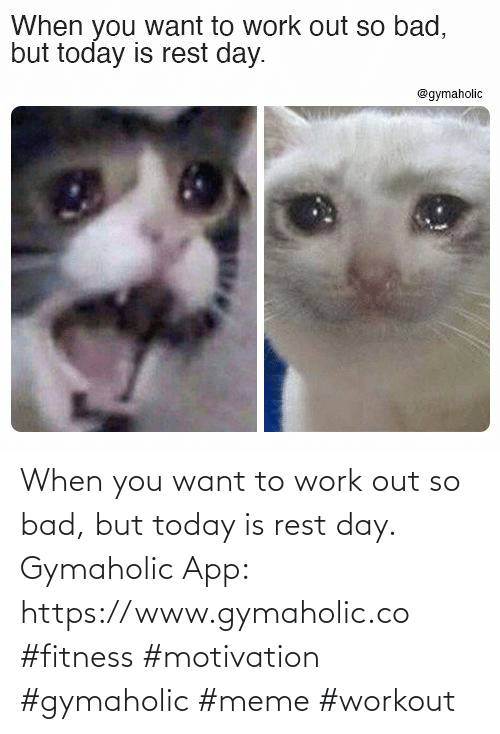 work out: When you want to work out so bad, but today is rest day.  Gymaholic App: https://www.gymaholic.co  #fitness #motivation #gymaholic #meme #workout
