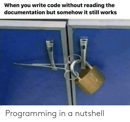 Write: When you write code without reading the  documentation but somehow it still works Programming in a nutshell