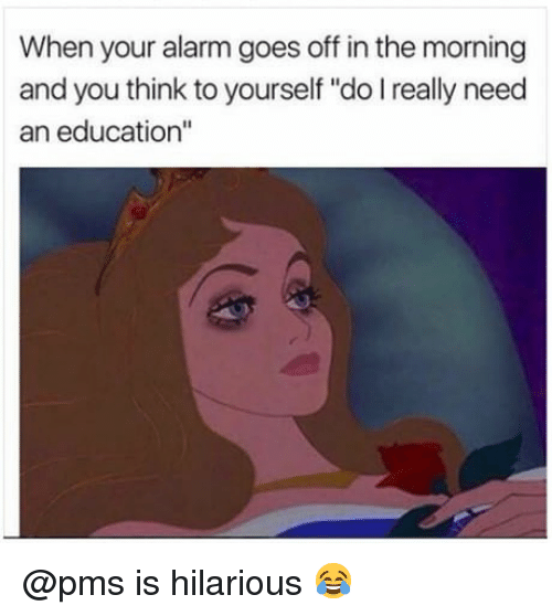 """Memes, Alarm, and Hilarious: When your alarm goes off in the morning  and you think to yourself """"do I really need  an education"""" @pms is hilarious 😂"""