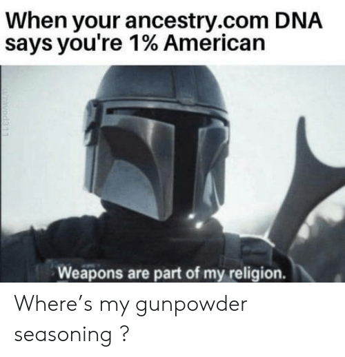 ancestry.com: When your ancestry.com DNA  says you're 1% American  Weapons are part of my religion.  zavod311 Where's my gunpowder seasoning ?