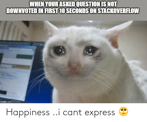 Express: WHEN YOUR ASKED QUESTION IS NOT  DOWNVOTED IN FIRST 10 SECONDS ON STACKOVERFLOW  imgfilip.com Happiness ..i cant express 🥺