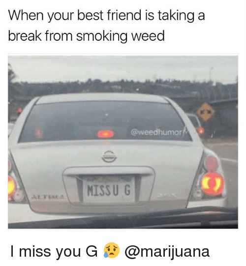 Best Friend, Friends, and Smoking: When your best friend is taking a  break from smoking weed  @weedhumor  MISSU G I miss you G 😥 @marijuana