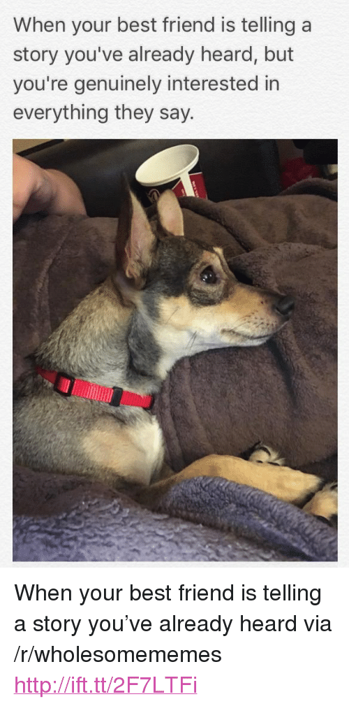 """Best Friend, Best, and Http: When your best friend is telling a  story you've already heard, but  you're genuinely interested in  everything they say <p>When your best friend is telling a story you've already heard via /r/wholesomememes <a href=""""http://ift.tt/2F7LTFi"""">http://ift.tt/2F7LTFi</a></p>"""