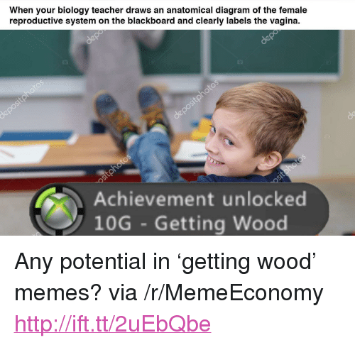 """achievement unlocked: When your biology teacher draws an anatomical diagram of the female  reproductive system on the blackboard and clearly labels the vagina.  Achievement unlocked  10G Getting Wood <p>Any potential in &lsquo;getting wood&rsquo; memes? via /r/MemeEconomy <a href=""""http://ift.tt/2uEbQbe"""">http://ift.tt/2uEbQbe</a></p>"""