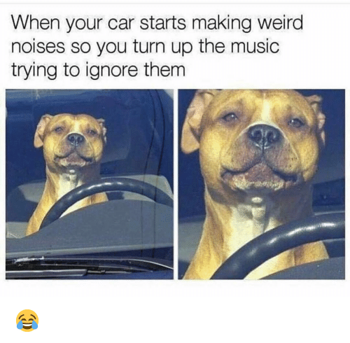 Funny, Music, and Turn Up: When your car starts making weird  noises so you turn up the music  trying to ignore thenm 😂