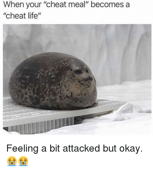 "Life, Memes, and Okay: When your ""cheat meal"" becomes a  ""cheat life"" Feeling a bit attacked but okay. 😭😭"