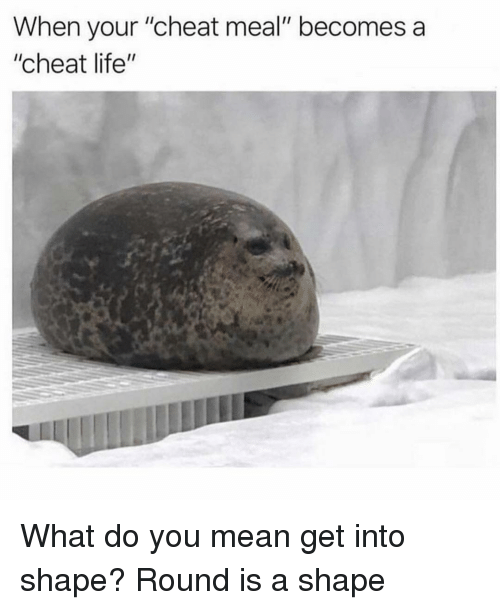 "Life, Mean, and Girl Memes: When your ""cheat meal"" becomes a  ""cheat life"" What do you mean get into shape? Round is a shape"