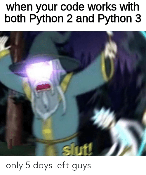 When Your: when your code works with  both Python 2 and Python 3  slut! only 5 days left guys