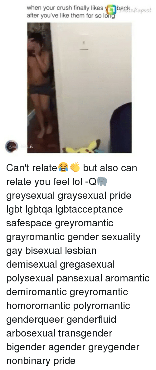 Graysexual bisexual