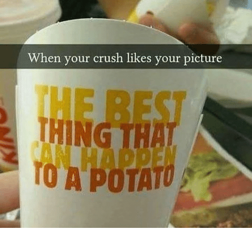 potatos: When your crush likes your picture  THING  TO A POTATO