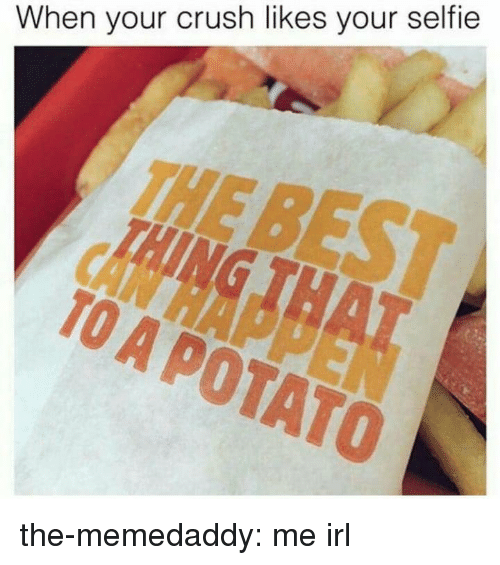Crush, Selfie, and Tumblr: When your crush likes your selfie  THE  TO A POTATO the-memedaddy:  me irl