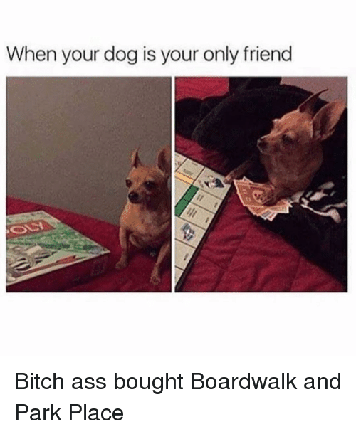 Only Friend: When your dog is your only friend Bitch ass bought Boardwalk and Park Place