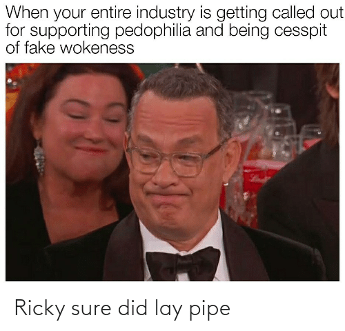 Industry: When your entire industry is getting called out  for supporting pedophilia and being cesspit  of fake wokeness Ricky sure did lay pipe