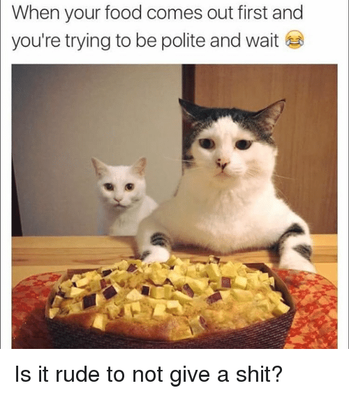 Not Giving A Shit: When your food comes out first and  you're trying to be polite and wait Is it rude to not give a shit?