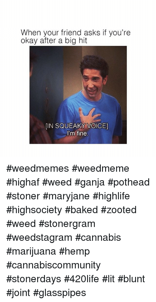 Baked, Lit, and Weed: When your friend asks if you're  okay after a big hit  [IN SQUEAKY VOICE)  I'm fine #weedmemes #weedmeme #highaf #weed #ganja #pothead #stoner #maryjane #highlife #highsociety #baked #zooted #weed #stonergram #weedstagram #cannabis #marijuana #hemp #cannabiscommunity #stonerdays #420life #lit #blunt #joint #glasspipes