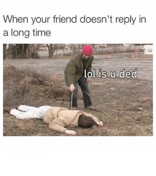 Dedded: When your friend doesn't reply in  a long time  is u ded  lol ⠀