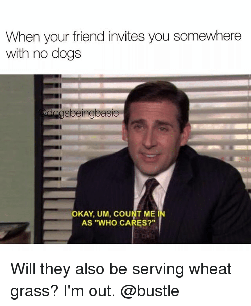 """Grasse: When your friend invites you somewhere  with no dogs  gsbeingbasic  OKAY, UM, COUNT ME  AS """"WHO CARES?""""  IN Will they also be serving wheat grass? I'm out. @bustle"""