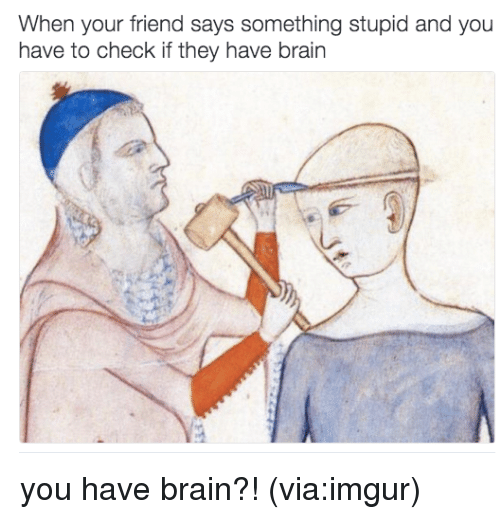 imgure: When your friend says something stupid and you  have to check if they have brain you have brain?! (via:imgur)
