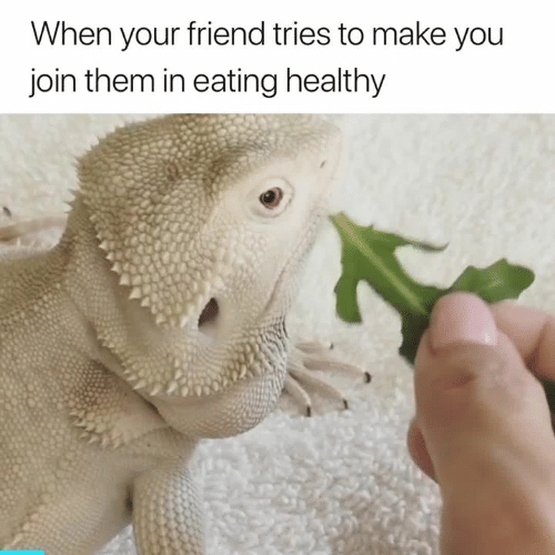 Friend, Them, and Make: When your friend tries to make you  join them in eating healthy