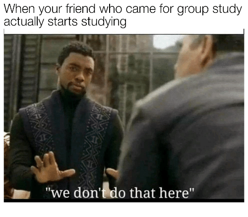 Who, Friend, and Group: When your friend who came for group study  actually starts studying  we don't do that here""
