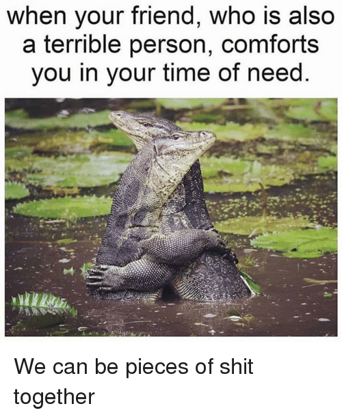 Shit, Time, and Girl Memes: when your friend, who is also  a terrible person, comforts  you in your time of need We can be pieces of shit together