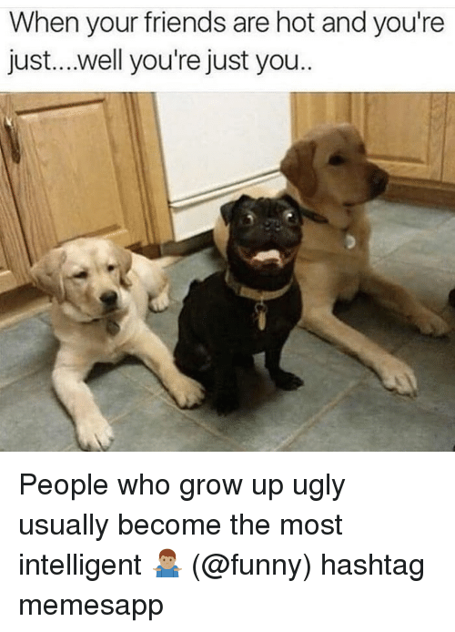 Friends, Funny, and Memes: When your friends are hot and you're  just....well you're just you People who grow up ugly usually become the most intelligent 🤷🏽‍♂️ (@funny) hashtag memesapp