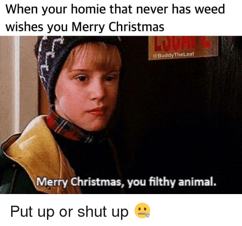 Merry Christmas Ya Filthy Animal Meme.When Your Homie That Never Has Weed Wishes You Merry