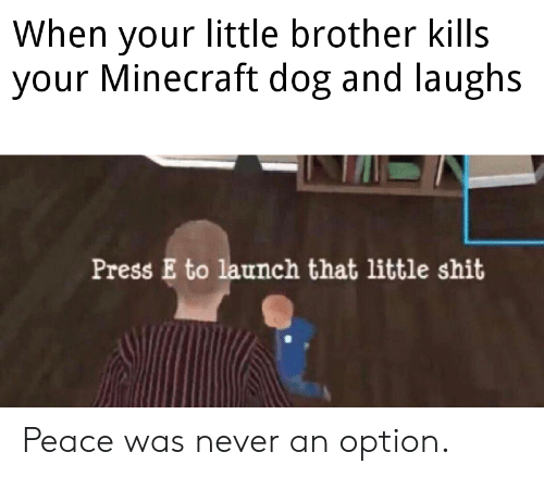 Launch: When your little brother kills  your Minecraft dog and laughs  Press E to launch that little shit Peace was never an option.