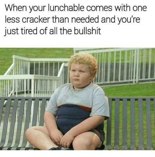 Memes, Bullshit, and All The: When your lunchable comes with one  less cracker than needed and you're  just tired of all the bullshit
