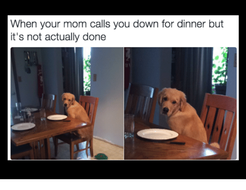Mom, Down, and You: When your mom calls you down for dinner but  it's not actually done