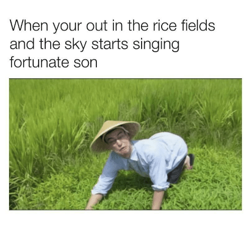 Singing, Rice, and Sky: When your out in the rice fields  and the sky starts singing  fortunate son