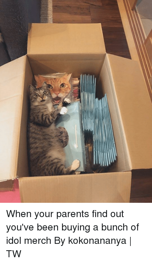 merch: When your parents find out you've been buying a bunch of idol merch  By kokonananya | TW