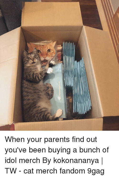 9gag, Memes, and Parents: When your parents find out you've been buying a bunch of idol merch⠀ By kokonananya | TW⠀ -⠀ cat merch fandom 9gag