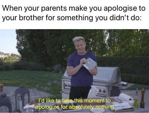 Absolutely Nothing: When your parents make you apologise to  your brother for something you didn't do:  l'd like to take this moment to  apologize for absolutely nothing