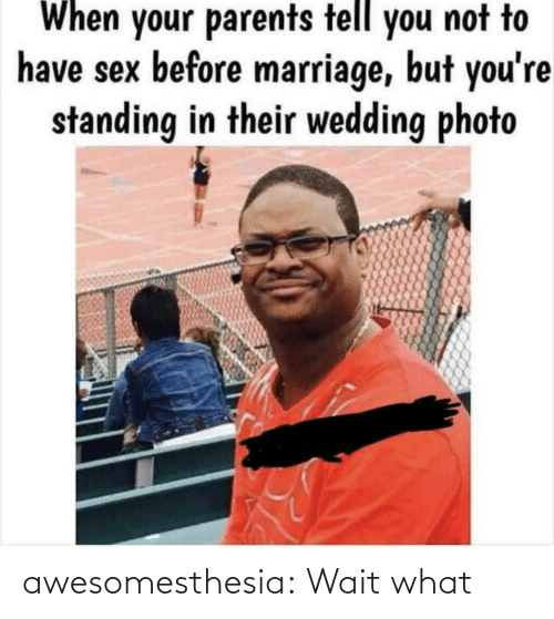 When Your: When your parents tell you not to  have sex before marriage, but you're  standing in their wedding photo awesomesthesia:  Wait what