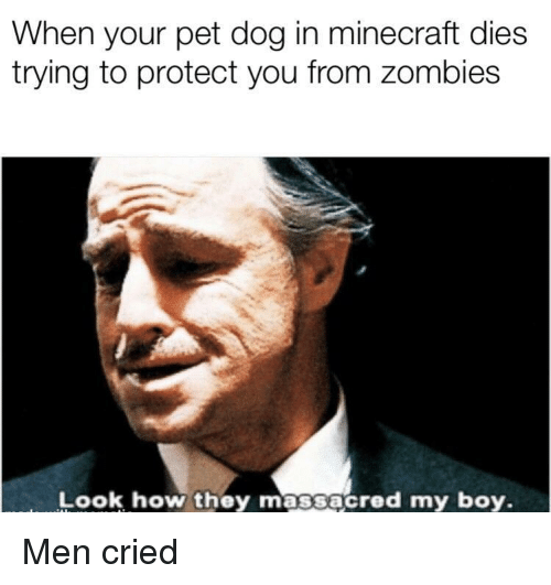 Minecraft, Zombies, and Boy: When your pet dog in minecraft dies  trying to protect you from zombies  Look how they massacred my boy Men cried